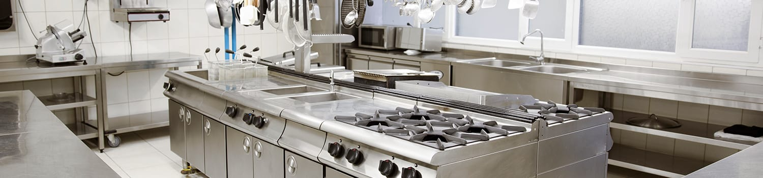 commercial kitchen in illinois with pest problems